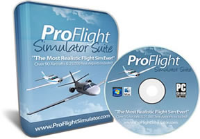 Pro Flight Simulator